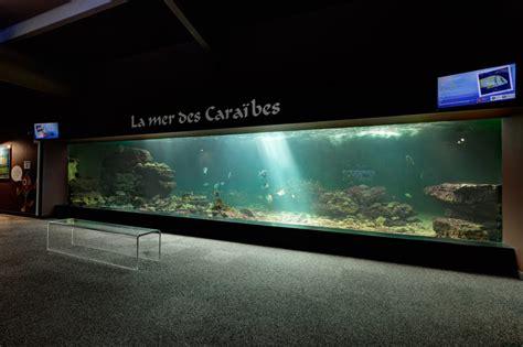 vivez l exp 233 rience de l aquarium talmont hilaire vend 233 e