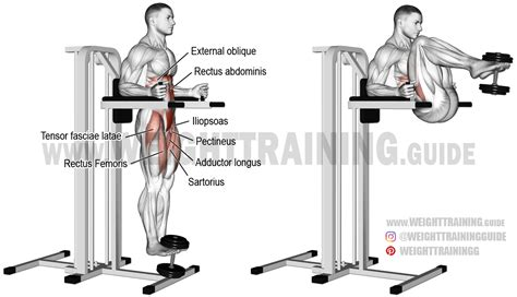 weighted captain s chair leg and hip raise exercise and