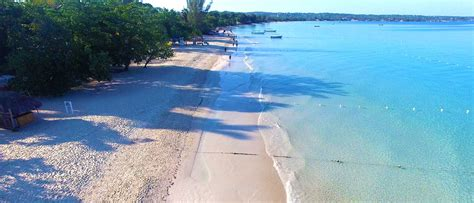Things To Do In Jamaica Find The Best Attractions In