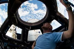 Astronaut Alexander Gerst Checks Out Station Cupola | NASA