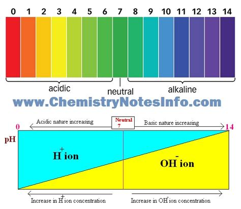 10 Class Acids, Bases And Salts  Chemistry Notes Info  Your Chemistry Tutor Provide Notes For