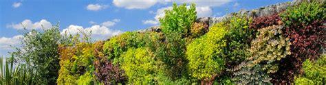 mur v 233 g 233 tal ext 233 rieur garantie minimum 10 ans jardins de babylone