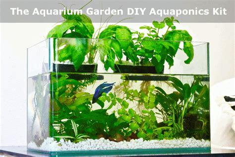 Diy Self Cleaning Fish Tank