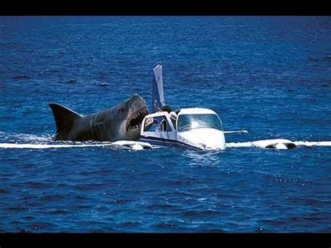 Cape Cod Boating Accident by Megalodon Shark Attack Caught On Camera Attacking Crash