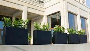 Gräser Kübel Terrasse : sichtschutz f r terrassen 5 stilvolle m glichkeiten vorgestellt ~ Markanthonyermac.com Haus und Dekorationen