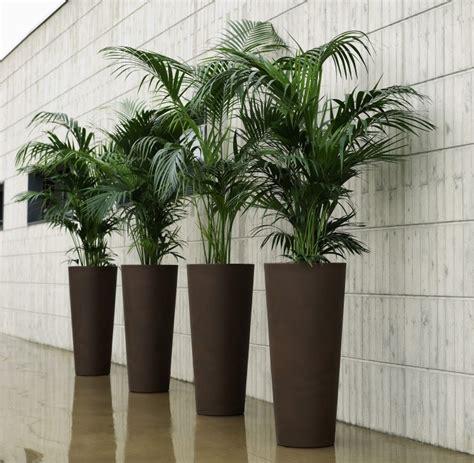 comment bien choisir le pot pour chaque plante le paysagiste