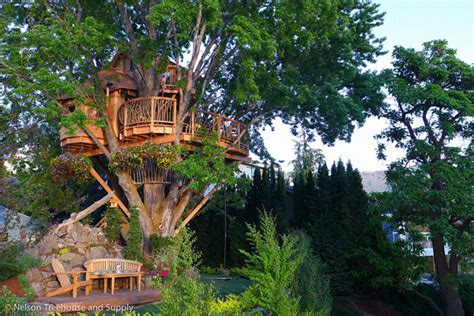 Tarzan Boat Dallas by Experience The Treehouse Of Your Childhood Dreams With