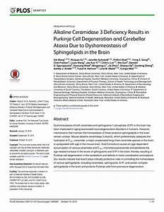 (PDF) Alkaline Ceramidase 3 Deficiency Results in Purkinje ...