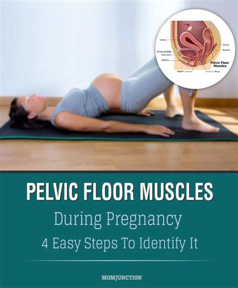 how to do kegel pelvic floor exercises during pregnancy