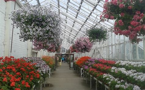 A Summer Visit To The Winter Gardens At Duthie Park
