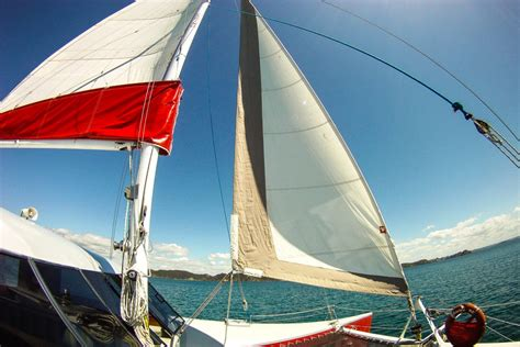 Catamaran Sailing Bay Of Islands Nz by Bay Of Islands Tour Swim With Dolphins In New Zealand