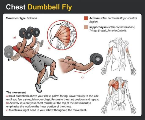 at home chest exercises chest workout fitness home legs and at home