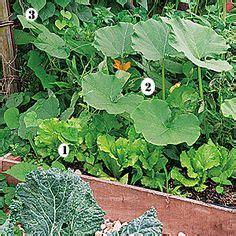 comment cr 233 er des bordures jardins tuiles et tuile