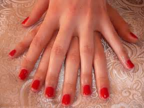 faux ongles le guide complet formation proth 233 siste ongulaire