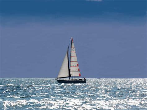 Catamaran Sailing Ship by Sailboat In Ocean Essentials Cafe Sailboat Boat