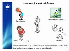 Norovirus – meet the HERBS theHERBAL Cache