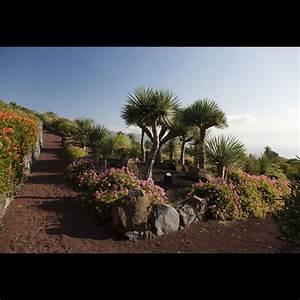 La Palma Jardin : parador de la palma paradores de turismo ~ Markanthonyermac.com Haus und Dekorationen