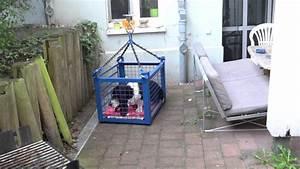 Tragehilfe Für Kübelpflanzen : hundelift aufzug f r hunde die keine treppen mehr laufen k nnen youtube ~ Markanthonyermac.com Haus und Dekorationen