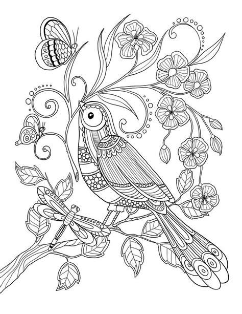 Les 46 Meilleures Images Du Tableau Coloriage Perroquet Sur Pinterest  Coloriage Perroquet
