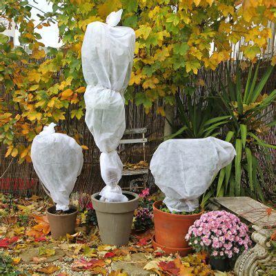 Voile D'hivernage Sur Plantes En Pots  Les Conseils Pour
