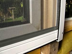Mücken In Der Wohnung Was Tun : 3 tipps gegen m cken in der wohnung der gartenratgeber ~ Markanthonyermac.com Haus und Dekorationen