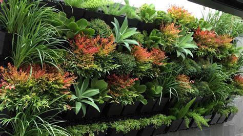 Top Best Plants For Your Indoor Vertical Garden