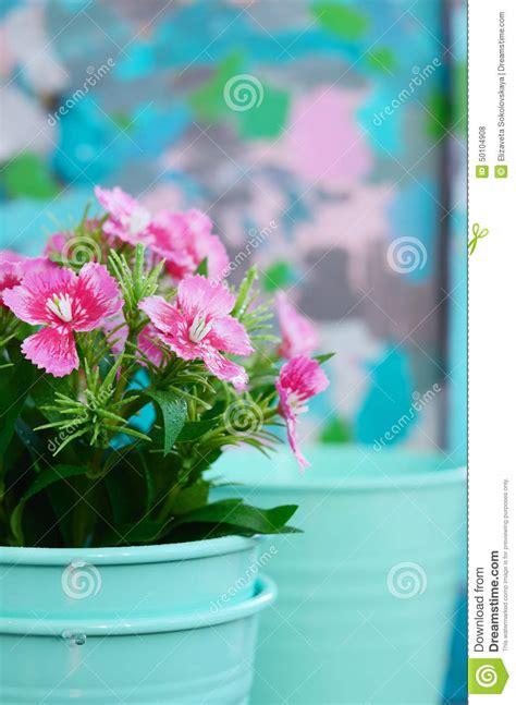 fleurissez dans le pot de fleur de sarcelle d hiver avec l espace de copie sur le fond color 233