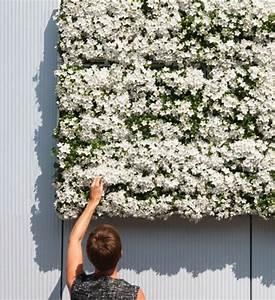 Gewächshaus Für Die Wohnung : h ngende g rten und pflanzenw nde f r die wohnung oder den balkon ~ Markanthonyermac.com Haus und Dekorationen