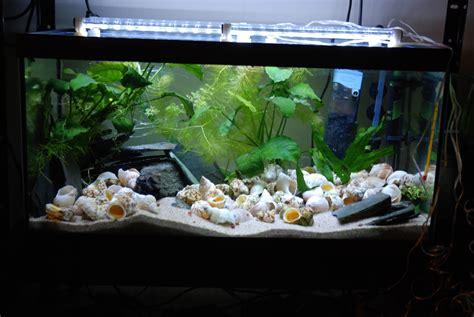 eclairage aux leds simple et pas cher partie 2 modification de la galerie d un 54 litres tanganyika