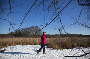 Scarborough Land Trust ADA trail - Kennebec Journal and ...