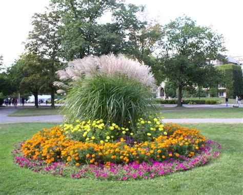 bloombety annual flower bed designs with circles shape annual flower bed designs
