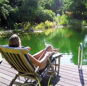 Badeteich Im Garten : swimmingpool oder badeteich vorteile und nachteile der l sungen welt ~ Markanthonyermac.com Haus und Dekorationen