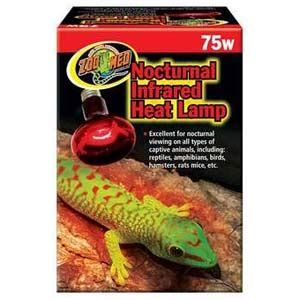 ed nocturnal infrared heat l review box turtle world