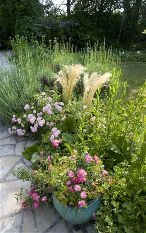 les pot 233 es de rosiers et vivaces tr 232 s d 233 coratives au jardin sur la terrasse