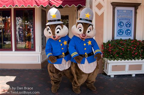 Chip N Dale Costume by Collection Chip And Dale Halloween Costumes Pictures