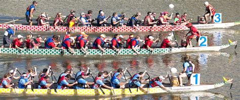 Dragon Boat Racing Memes by Summer Join The Jetaany Dragonboat Team