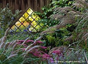 Sichtschutz Pflanzen Blühend : gartenplanung gartendesign und gartengestaltung staudenplanung ein staudenbeet mit gr sern ~ Markanthonyermac.com Haus und Dekorationen