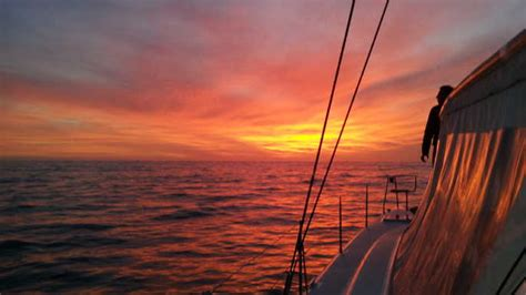 Catamaran And Cape Town by Cape Town Waterfront And Sunset Chagne Cruise Cape