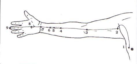 shiatsu fran 231 oise couteron le m 233 ridien d acupuncture quot ma 238 tre cœur quot