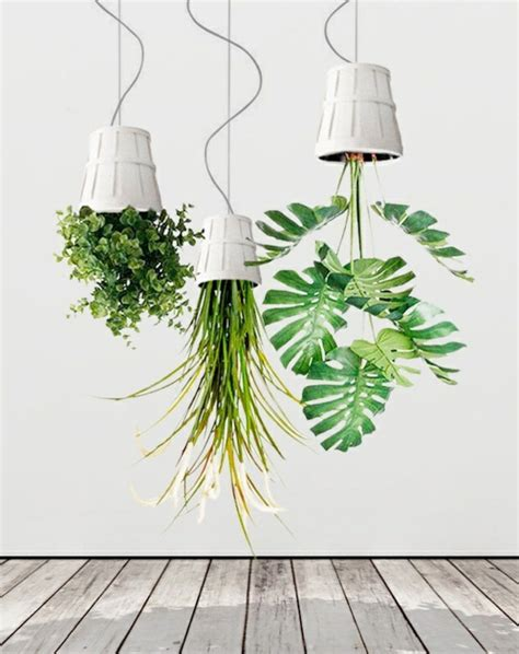 Hanging Houseplants  Pictures Of Hanging Baskets Lovely. Interior Decorating Styles. Bath Pictures. Youngs Appliances. Modern Vanity Stool. Pantry Liner. Wolf Range Reviews. Carolina Stone. Faux Leather Sectional