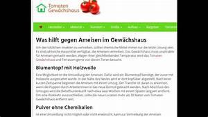 Hilft Mehl Gegen Ameisen : was hilft gegen ameisen im gew chshaus youtube ~ Whattoseeinmadrid.com Haus und Dekorationen