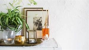 Geruch Im Kühlschrank Entfernen : so wirst du unangenehme ger che ohne chemikalien wieder los evidero ~ Markanthonyermac.com Haus und Dekorationen