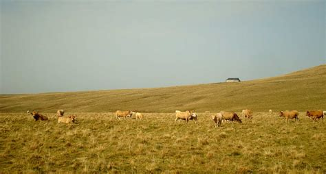 l aubrac cantal aveyron loz 232 re guide de tourisme et visite en photos