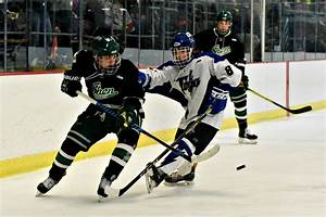 Bethlehem earns top seed in hockey playoffs | The Daily ...