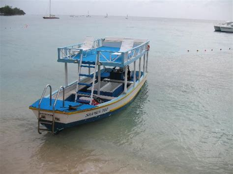 Glass Bottom Boat St James Barbados by Horse Racing Picture Of Barbados Caribbean Tripadvisor