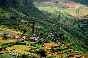 Sri Lanka Immobilien : le sri lanka de kandy nuwara eliya par la route du th checkin ~ Markanthonyermac.com Haus und Dekorationen