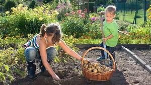 Garten Was Tun Im März : was jetzt im garten zu tun ist b z berlin ~ Markanthonyermac.com Haus und Dekorationen
