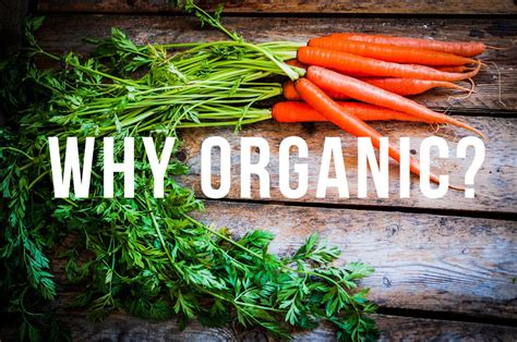 Benefits Of Going Organic-local