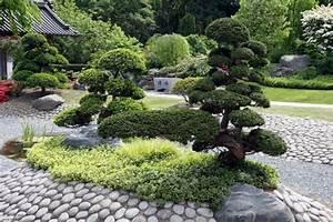 Pflanzen Japanischer Garten Anlegen : bonsai baum im zen garten gestaltungsideen ~ Markanthonyermac.com Haus und Dekorationen
