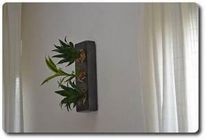 Pflanzen An Der Wand : echte pflanzen an der wand update der flowerboxen ~ Markanthonyermac.com Haus und Dekorationen
